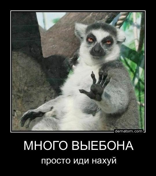 258130-mnogo_vyebona_prosto_idi_nahui.jpg.